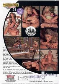 Sexual sex positions in porn