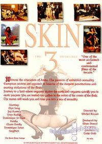 Skin 3 - The Third Degree back box cover