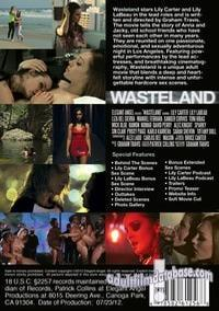 Wasteland back box cover