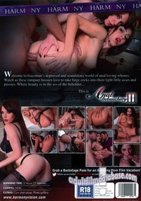 Anal Debauchery 3 video