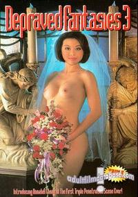 Depraved Fantasies 3 box cover