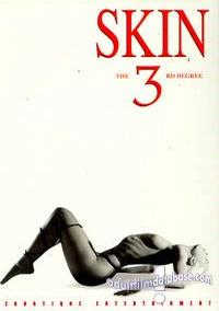 Skin 3 - The Third Degree box cover
