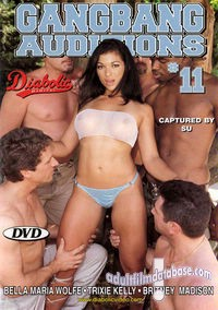 Gangbang Auditions 11 box cover