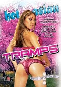 Hot Asian Tramps box cover