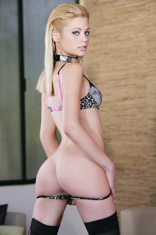 perfect pet - riley steele picture gallery   digital playground